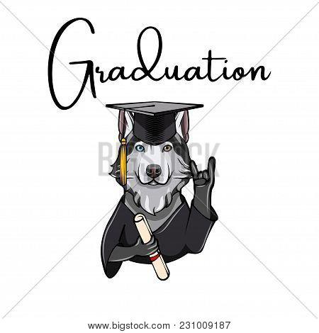 Siberian Husky Graduate. Dog With Diploma, Graduate S Cap And Horns Rock Gesture . Vector Illustrati