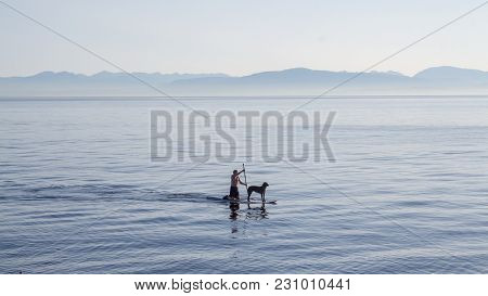 Kneeled Man On A Paddle Board With His Dog Rowing In The Middle Of The Still Water In Front Of The S