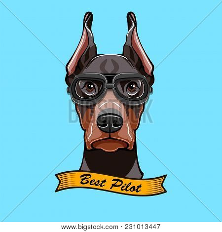 Doberman Pilon. Dog In Pilot S Glasses. Best Pilot Text. Ribbon. Vector Illustration.