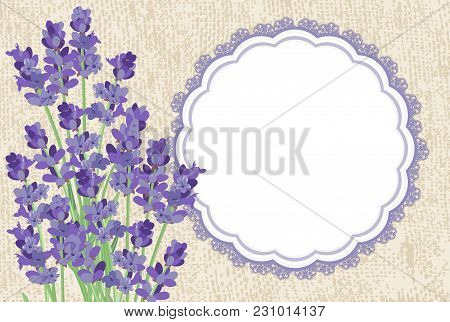 Lavender. Background With Lavender Flowers, The Texture Of The Canvas And Lace Border.
