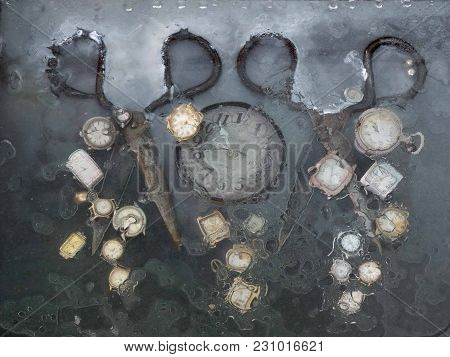 Two Pairs Of Old Scissors, Between Which Round White Watches Under The Glass, Covered With Oil, Immi