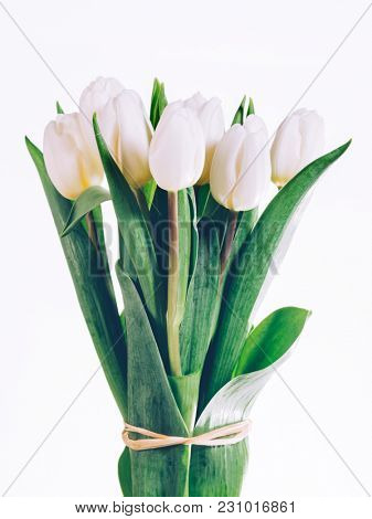 Bunch of fresh white tulips tied together. Mother's day. Anniversary gift.