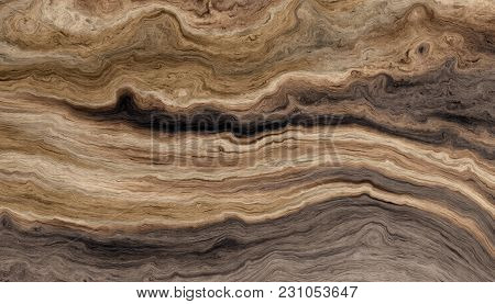 Texture Of Roots Of Tree With Wavy Lines And Age Rings. Colored Abstract Background.
