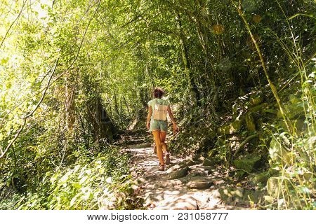 Young Woman On Trekking Trail Tropical Rain Forest