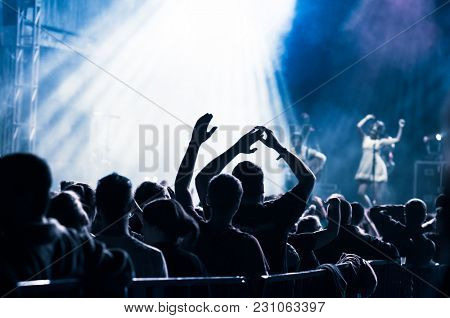 crowd having fun at live concert during music festival