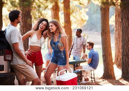 Three young adult friends with a cool box talking by a lake