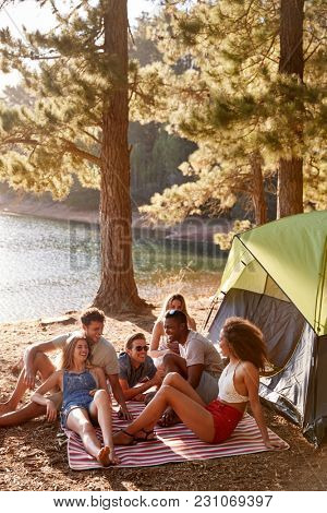 Friends relaxing on a blanket by a lake, vertical