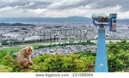 Top View Of Kyoto From Arashiyama Mountain With Monkeys And Binocular, Cloudy Day, Focus On Foregrou