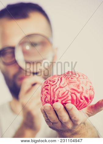 Adult Nerd Man Wearing Eyeglasses Looking At Human Brain Model. Thinking And Intelligence Conept