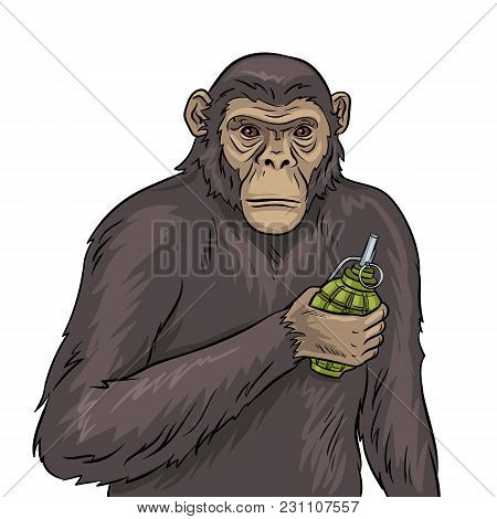 Monkey With Grenade Bomb In Hand Pop Art Retro Vector Illustration. Isolated Image On White Backgrou