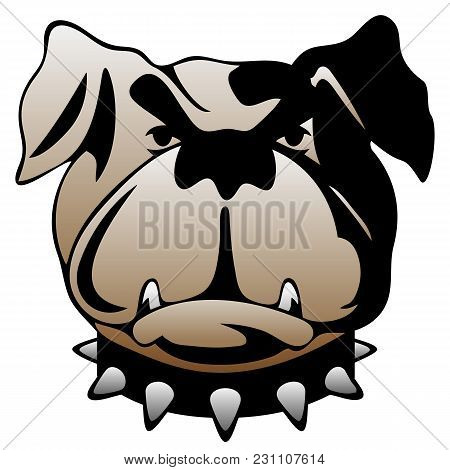 Pit Bull, Bull Dog Or Boxer Style Dog Looking Straight Ahead, With Serious Expression, Vector Illust