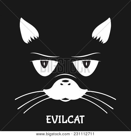Cat Eyes With Face In Dark Cartoon Vector Background