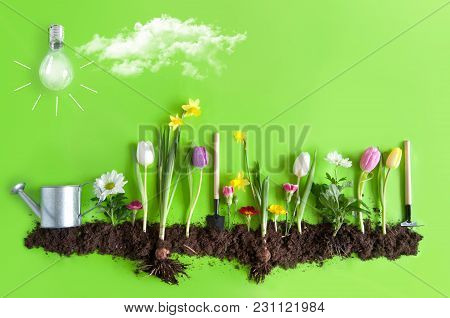 Spring Flower Bed Garden With Clouds And Light Bulb As The Sun