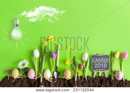 Easter Flower Bed Garden Background With Row Of Painted Eggs Amongst Flowers, With Clouds And Light