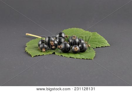 Colorful And Crisp Image Of Blackcurrant On Black Background