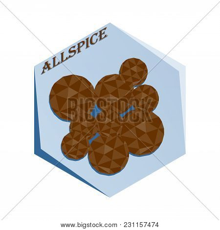 Label For Seasoning Allspice Pepper Polygonal Style