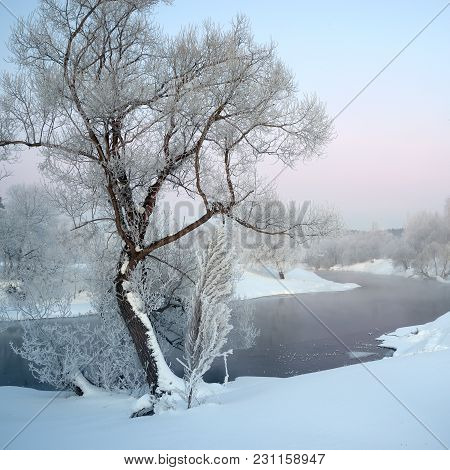 Covered With Hoarfrost Tree On The Bank Of The Winding River In The Early Morning Of Winter, The Squ