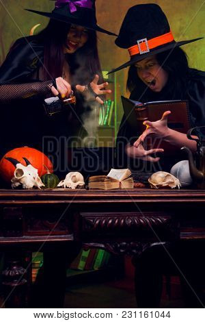 Picture of two witches brunettes in black hats making potions