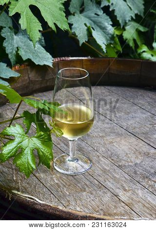 Glass Of White Wine On Vintage Old Wooden Barrel With Grape Leaves In The Vineyard Of Tenerife,canar