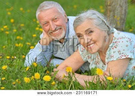 Happy Senior Couple Lying On Green Meadow With Dandelions