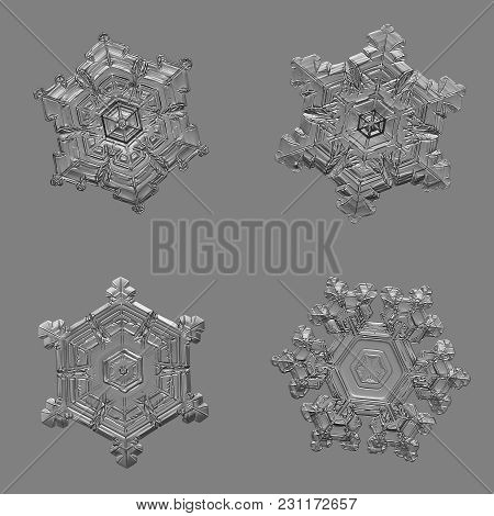 Four Snowflakes Isolated On Uniform Gray  Background. Macro Photo Of Real Snow Crystals: Elegant Sta