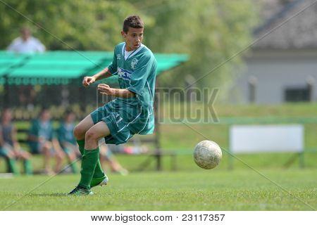 KAPOSVAR, HUNGARY - AUGUST 27: Richard Csaki in action at the Hungarian National Championship under 18 game between Kaposvar (green) and Gyor (white) August 27, 2011 in Kaposvar, Hungary.