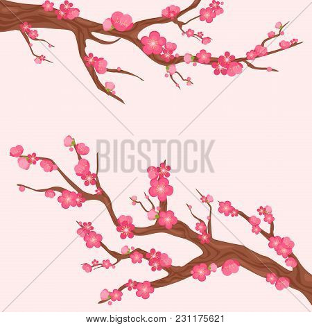 Vector Illustration Of Japan Cherry Branch With Blooming Flowers. Sakura Branches With Lot Of Beauti