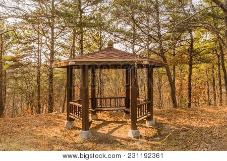 Wooden Gazebo Surrounded By Trees In Rural Woodland Area  On Sunny Day