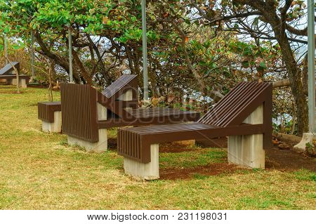 Wooden Sun Beds On The Green Lawn In The Park, Recreation In The City