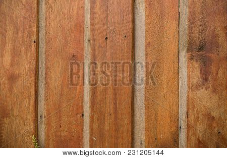 Brown Wood Lid. The Wooden House Wall