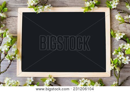 Frame Of Flowering Plum Branches With Space For Text On A Blackboard.