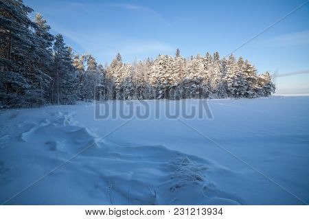 Frozen Lake Shore And Snow Covered Forest At Sunny Winter Day In Finland