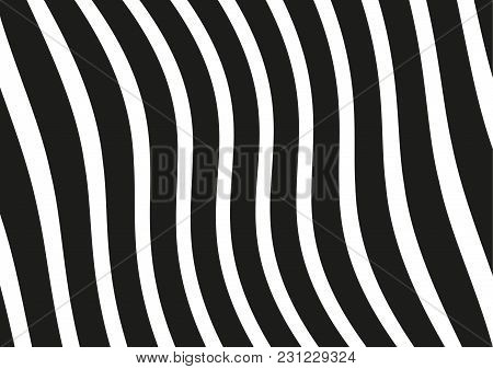 Abstract Wavy Lines. Curved Black And White Stripes. Vector Illustration