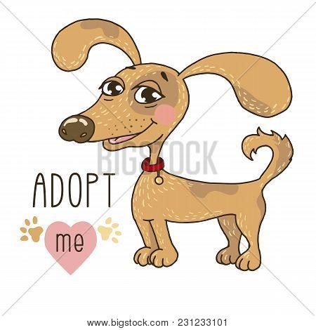 Cute Dog , Adopt Me
