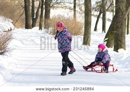 Happy Elder Sister Pulling Her Young Sister On The Sleds In Snowy Winter Park. Kids Playing Outdoors