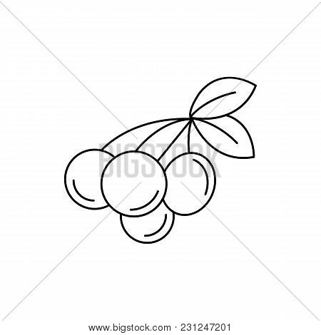 Rukem Icon. Outline Rukem Vector Icon For Web Design Isolated On White Background