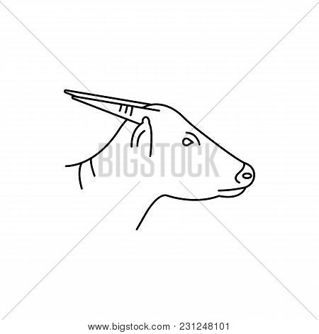 Anoa Icon. Outline Anoa Vector Icon For Web Design Isolated On White Background