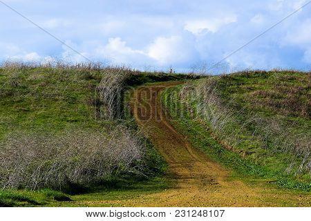 Hiking Trail Thru Grasslands And A Rural Hillside On A Lush Green Prairie