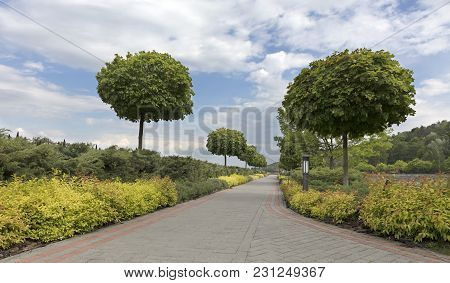 A Paved Stepped Path In A Beautiful Park Passes Through A Green Lawn With Decorative Flowers, Framed