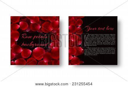 3394149 Falling Red Rose Petals