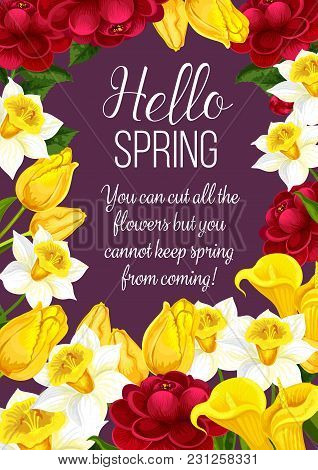 Hello Spring Festive Banner With Springtime Season Flower. Floral Greeting Card For Spring Holiday T