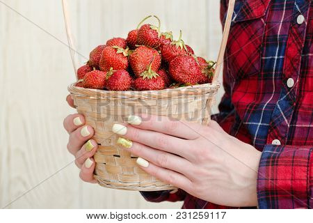Women's Hands Are Holding A Wicker Basket Of Ripe Strawberries. Light Wooden Background