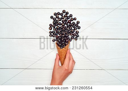 Woman Hand Holding Ice Cream Waffle Cone With Ripe Sweet Black Currant, Copy Space. Fresh Berries On