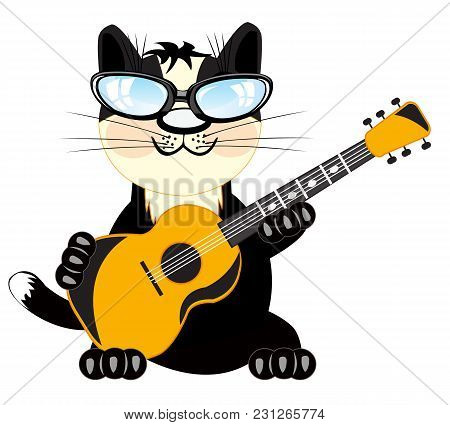 Black Cat Plays On Music Instrument Guitar