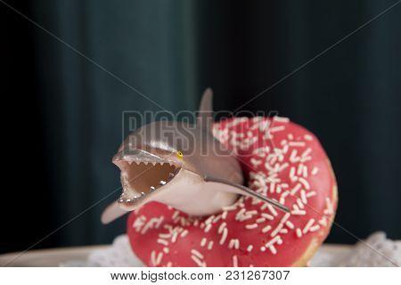 Green Curtain And Dolphin Donut Buoy