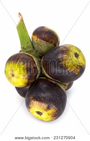 Nut Of Palmyra Palm, Close Up Of Tropical Fruit On White Background