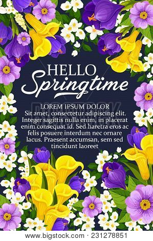 Hello Springtime Wishes Poster Of Daffodils, Tulips And Crocuses Bouquet And Seasonal Spring Quotes.