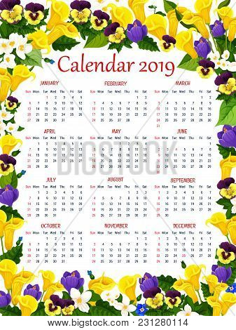 Calendar Template In Spring Flower Frame. 2019 Year Calendar Or Floral Planner, Decorated With Bloom