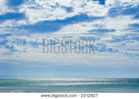 Beatiful Sea And Sky