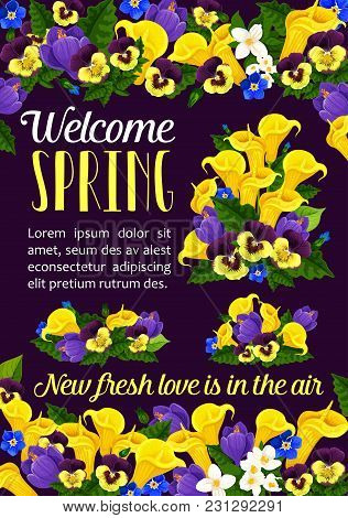 Welcome Spring Season Floral Banner With Springtime Flower Bouquet. Crocus, Pansy And Calla Lily, Bl